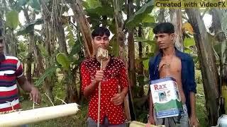 পিরিতি শিখায়া কোথায় গেলি হারাইয়া