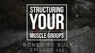 Structuring Your Muscle Groups