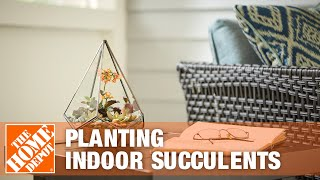 Planting Indoor Succulents - The Home Depot Gardenieres