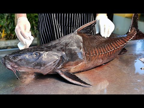 Bangkok Food - GIANT MONSTER FISH CURRY Thai Seafood Thailand