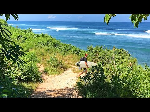 EASY Waves In PARADISE