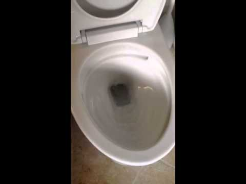 toto vespin ii. the toto vespin ii double cyclone toilet toto ii #
