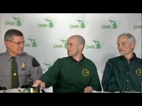 DNR Live: Deer -- online Q & A session