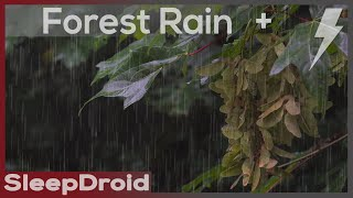 ► Forest Rain and Thunder Sounds for Sleeping ~Relaxing Rain Sounds (Lluvia) Chuva Dormir 10 hours