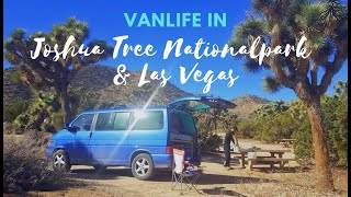 Unterwegs in Fabulous Las Vegas + Joshua Tree Nationalpark :D - Weltreise VLOG 12