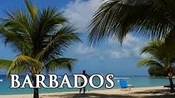 Barbados: ein kräftiger Schuss Karibik - Reisebericht