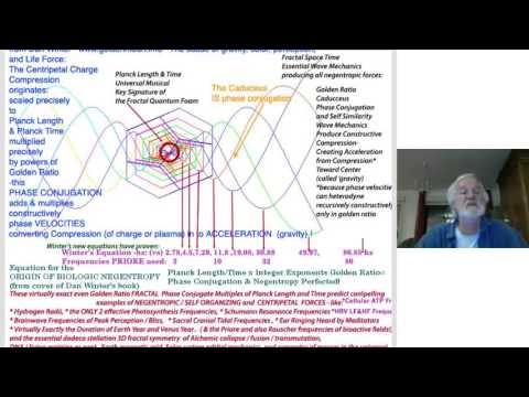 Advanced Fractal Physics and Zero Point Vacuum Coherence with Dan Winter