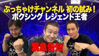 【緊急告知】11月1日(日) WBA・IBF世界バンタム級タイトルマッチ 井上尚弥vsジェイソン・マロニー 生解説 告知