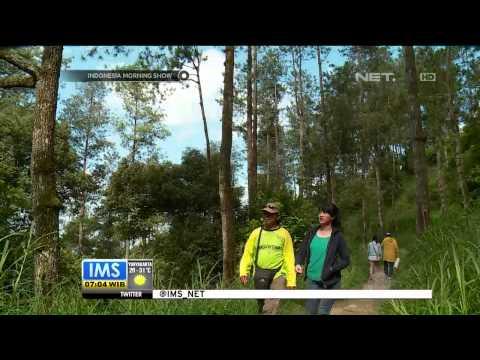 Destinasi Wisata One Day Ungaran Semarang - IMS
