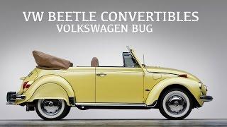 VW Beetle Convertibles - Volkswagen Bug Classic Cars