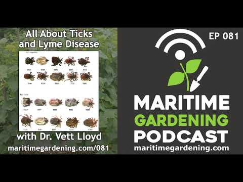 MGP Episode 81: All About Ticks and Lyme Disease with Dr. Vett Lloyd
