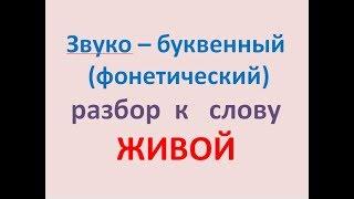 Звуко – буквенный  (фонетический)  разбор  к   слову  ЖИВОЙ