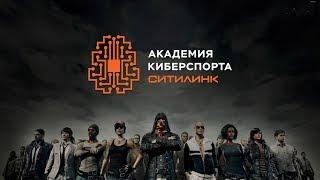 Академия киберспорта Ситилинк: Королевская битва. Отборочный этап