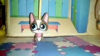 LPS : В детском садике