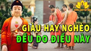 Ai Đang Nghèo Khó Hay Ốm Đau Bệnh Tật Hãy Nghe Phật Lý Giải NGUYÊN NHÂN GIÀU NGHÈO - Rất Hay