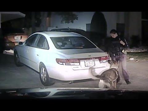 Venice police dashcam: Ladarius Smith traffic stop