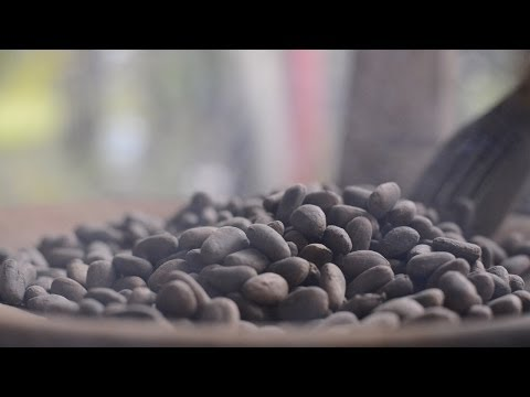 """Habitat"" Episode 10 - Traditional Agro-forestry Systems: Cacao (local farmers/Mujeres de Cacao)"