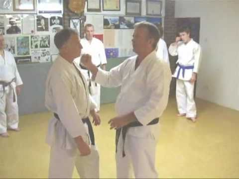 Dojo iron fist karate