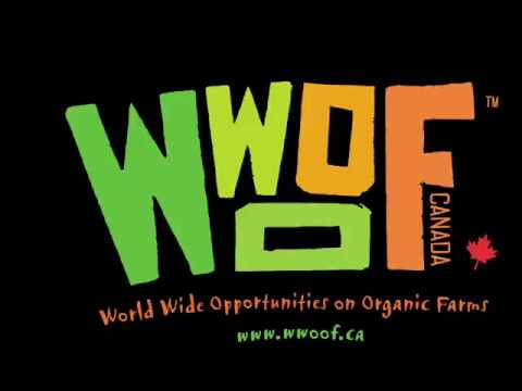 WWOOF is the best experience in the world...