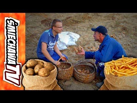 Wykopki 'u Szwagra' - Video Dowcip