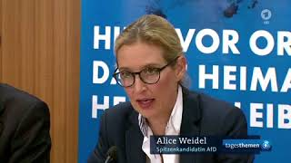 Die AfD im Spiegel des Mainstreams - Antwort auf A. Weidel?