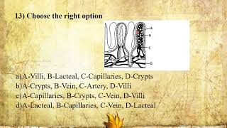 I PUC   Biology   Digestion and Absorption   CET/ NEET