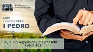 I. P. Pq. São Domingos - 20/10/2019 - Qual é o segredo de uma vida feliz?