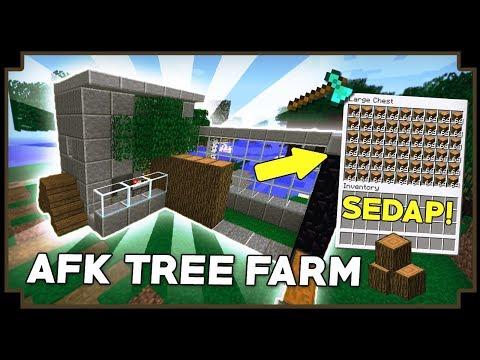 CARA MEMBUAT AFK TREE FARM - Minecraft Indonesia