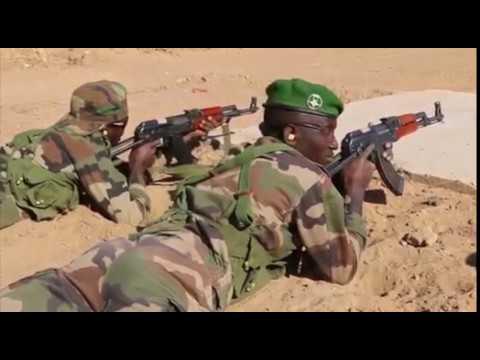 DFN: Small Unit Tactics, DIFFA, NIGER, 02.22.2018 thumbnail