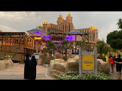 ATLANTIS THE PALM AQUAVENTURE WATERPARK DOLPHIN BAY DUBAI UAE RESORT 4K HOTEL JUMEIRAH