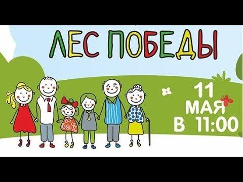 АКЦИЯ ЛЕС ПОБЕДЫ 2019 / г.Подольск