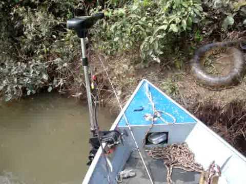 Sucuri no Rio Ivinhema - Taquarussu/MS -...