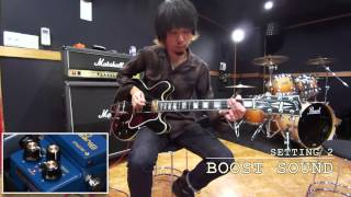 Nothing's Carved In Stone 生形真一 × BOSS BD-2W