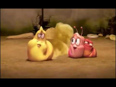 Larva Full Episodes  The Best Larva Cartoons New Collection 2016