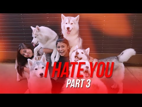 I Hate You: Part 3