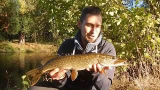 Im Herbst angeln auf Hecht am kleinen Fluss