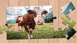 Funny Animals Cute and Fanny Cow Kids Puzzle game Learn puzzle