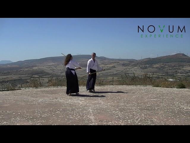 06 Kumi jo roku - Aikido Novum Experience - Kumi jo Juppon -  組み杖六 - 組み杖十本  - 合氣道 - 合氣杖
