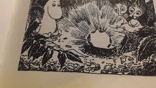 Шляпа Волшебника. Последняя глава.(Туве Янссон).