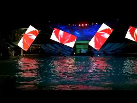 Shamu Rocks from SeaWorld Orlando Summer Nights Splash Zone View 6-23-13