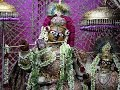 Download Radha Govind Devji Deity Darshan 24 August 2016 MP3 song and Music Video