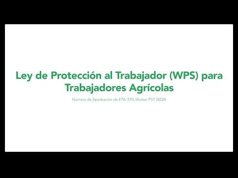 Baixar WPS Video - Download WPS Video | DL Músicas