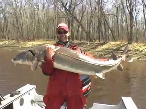 River Monsters: Minnesota