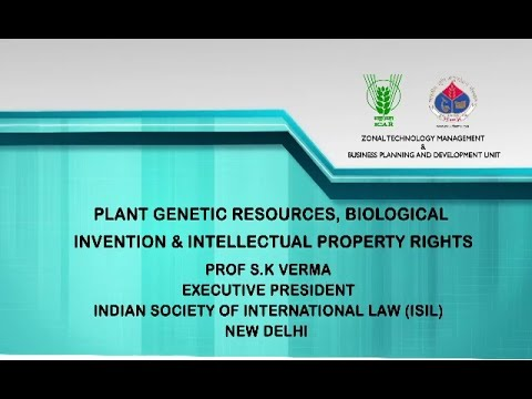 Plant Genetic Resources, Biological Invention and IPR