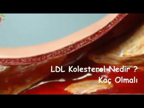 LDL Kolesterol Nedir  Kaç Olmalı ?
