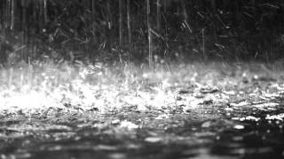 Digital Blonde - Rainsong