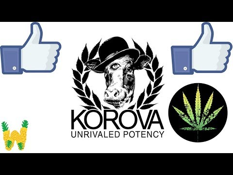 Korova Edibles Review: The Original California King