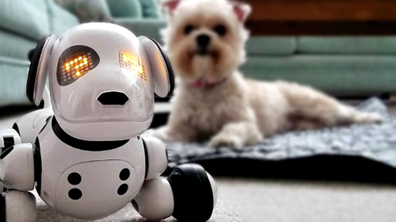 Роботы Животные | видео интерактивные домашние животные