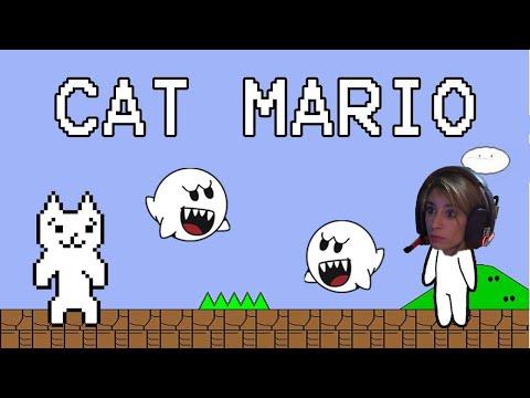 El gato troll | Cat Mario
