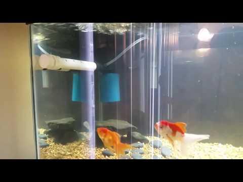 Fish aquarium new power head